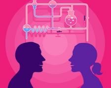 Azok a bizonyos feromonok… valóban hatnak ránk is a párválasztásnál?