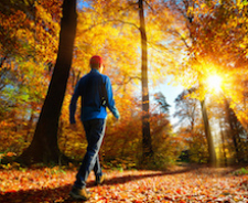 5 elbűvölő szépségű őszi kirándulóhely