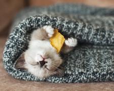 Győzzük le az őszi fáradtságot!
