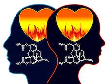 Szerelmünk agyi vegyületei: hogyan működik a kémia köztünk?