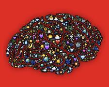 Az érzelmi intelligencia, az EQ