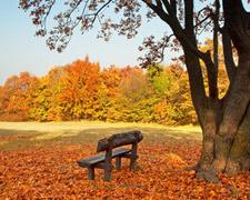 A legszebb őszi kirándulóhelyek